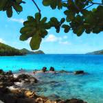 """Peaceful Beach St. Thomas"" by susansartgallery"