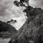 """Matapouri"" by dawnleblanc"