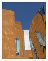 Gehry's Architecture with Jagged Arc