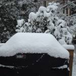 """Snow on Weber"" by ckeenan"