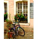 """""""EE-043 Trier Bicycle"""" by marywhitmer"""