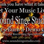 """Sound Singe Studio Promo Art"" by DavidHensenPhotography"