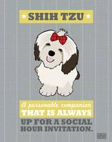 ShihTzu Gray/Gold