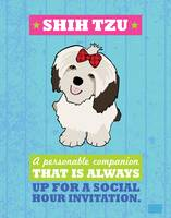 ShihTzu Blue/Green