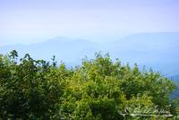 Grandfather Mountain 2009 DSC_0021