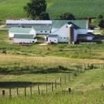 """Amish Farm"" by steveondrusphotography"