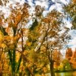 """Watercolour lakeside"" by InspiraImage"