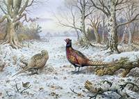 Pair of Pheasants with a Wren by Carl Donner