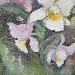 """Cattleya Orchid"" by Mesterartshop"