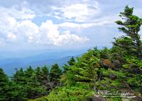 Grandfather Mountain 2011 DSC_0102