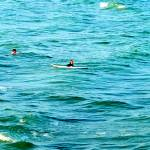 """""""Catching Waves"""" by LauraD"""