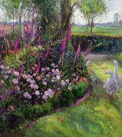 Rose Bed and Geese by Timothy Easton