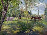 In the Rectory Paddock by Timothy Easton