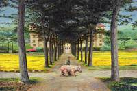 Big Pig, Pistoia, Tuscany by Trevor Neal