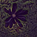 """""""Flower 4 Dark"""" by KjWorthing"""