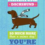 """Dachshund Blue/Green"" by Nose2Tales"