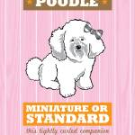 """Poodle Pink/Orange"" by Nose2Tales"