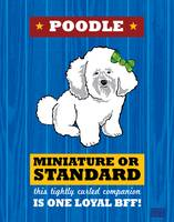 Poodle Royal/Red