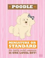 Poodle3 Pink/Orange