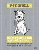 Pit Bull2 Gray/Gold