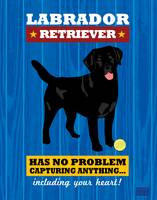 Labrador Retriever2 Royal/Red