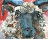 Wooly Booly, Sheep Print