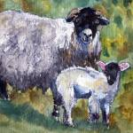 """Peaceful Fleecy Feeling, Sheep Print"" by schulmanart"