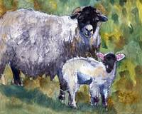 Peaceful Fleecy Feeling, Sheep Print