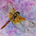 """""""Dragonfly Darner!"""" by schulmanart"""