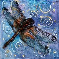 Starry Starry Dragonfly