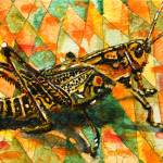 """Glorious Grasshopper"" by schulmanart"