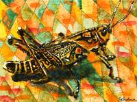 Glorious Grasshopper