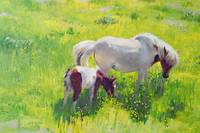 Piebald horse and foal by William Ireland
