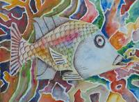 Fish in a Rainbow
