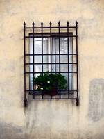 Window Bars 2