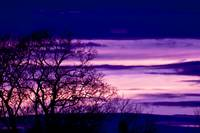 Purple Sunset Silhouette
