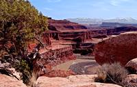 _IGP8236.Canyonlands