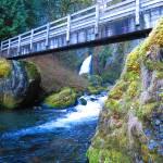 """Mossy Bridge"" by Arooski"