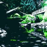 """""""Alien Waterfall"""" by Arooski"""