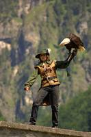 The Falconer, Austria