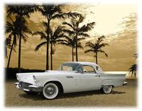 1957 Thunderbird On Naples Beach