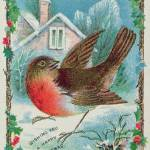 """Christmas card depicting a robin (colour litho)"" by fineartmasters"