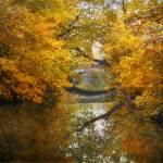 """Autumn Country Bridge"" by JessicaJenney"