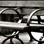 """Bench Shapes"" by raetucker"