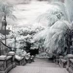 """Frederick Street Steps"" by paulyworksfineart"