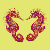 two seahorses - yellow and red
