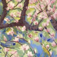 Spring Blossoms 3 Art Prints & Posters by Miriam Schulman