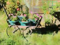 Petunias and Wagon