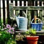 """Watring Can and Blue Basket"" by susansartgallery"
