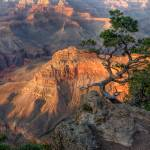 """The Grand Canyon"" by ajwright"